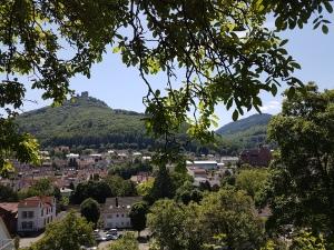 Blick zurück nach Annweiler